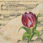 ピアノ教本のオススメ。初心者向けの練習方法も紹介